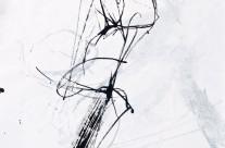 2012, Kohle und Acryl auf Papier, 50 x 33 cm